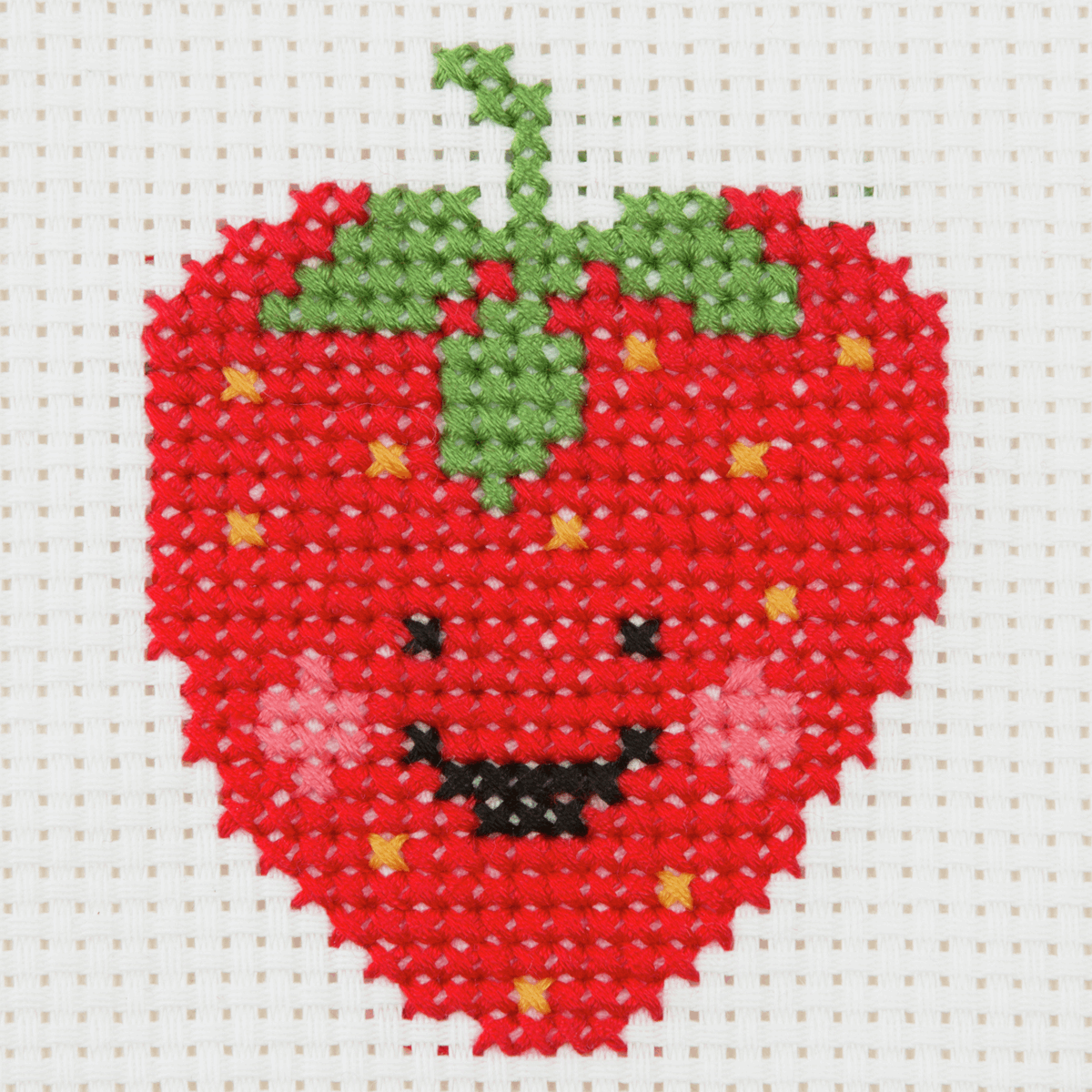 Picture of Counted Cross Stitch Kit: 1st Kit: Strawberry