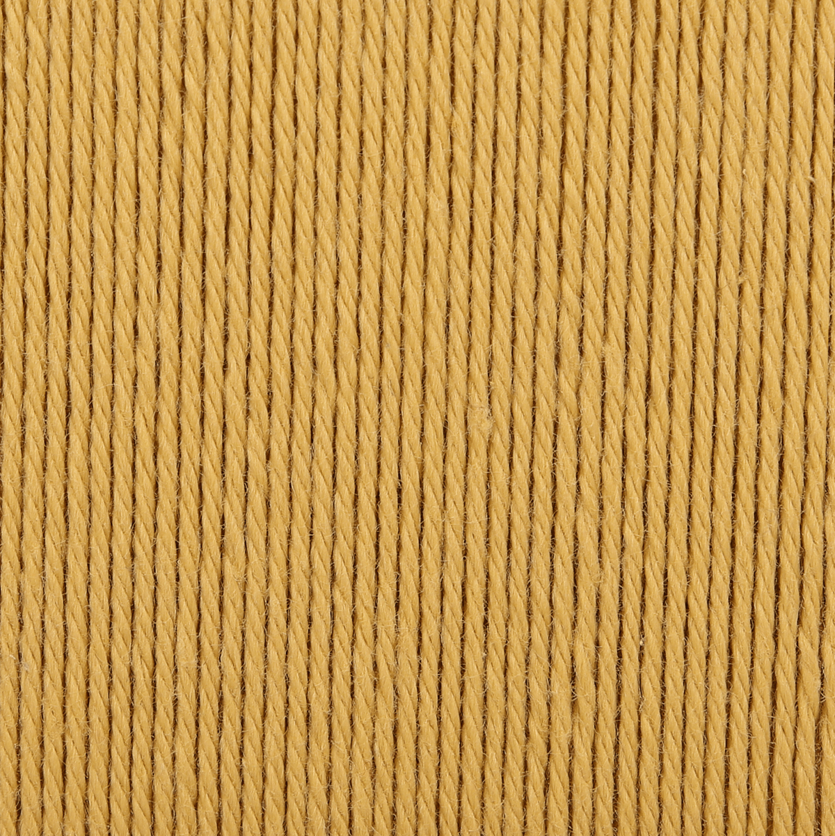 Picture of Organic Cotton: 10 x 50g: Sunflower
