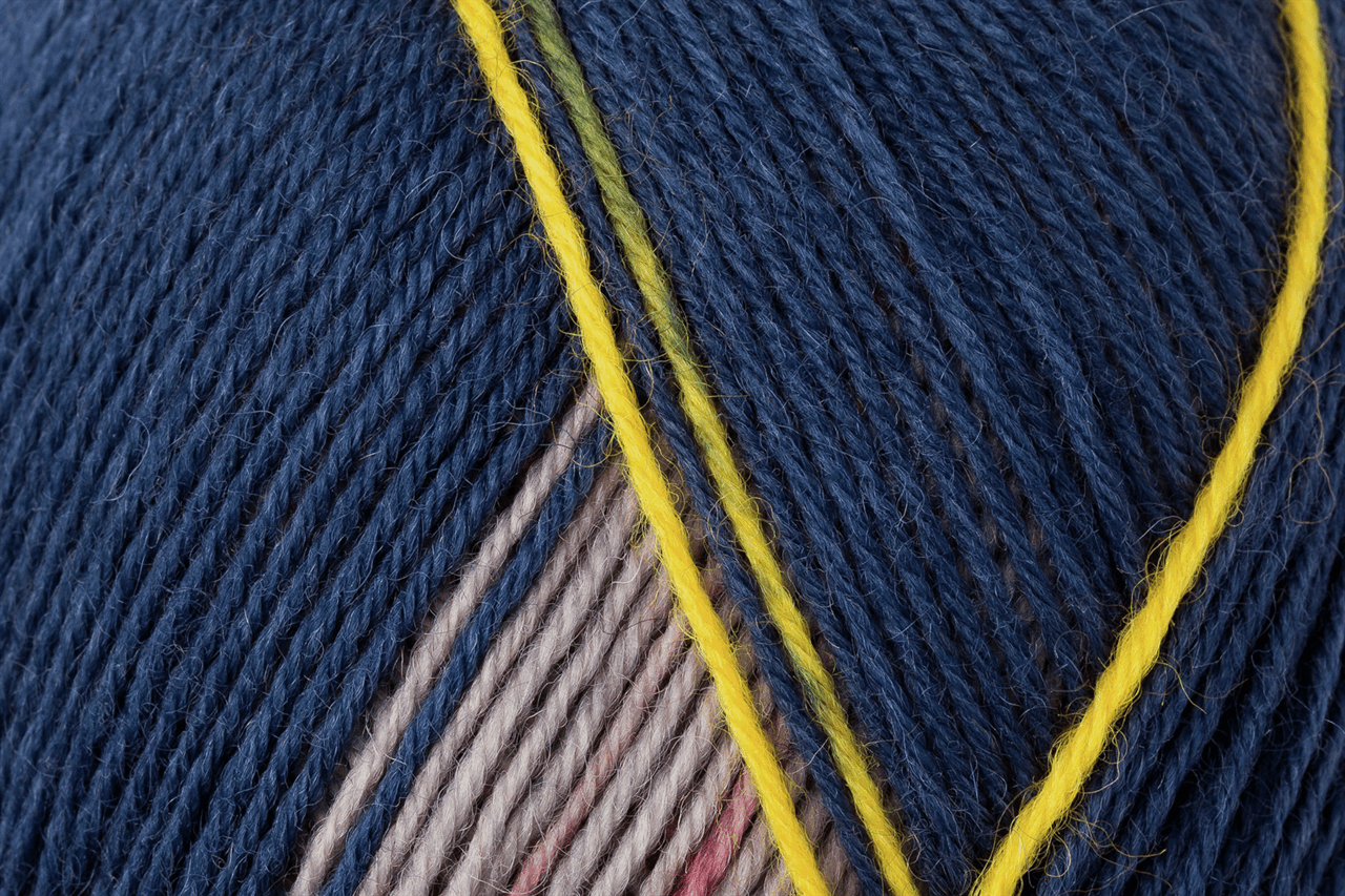 Picture of Design Line - Arne & Carlos: 4 Ply: Pairfect: Edition 4: 5 x 100g: Jolster