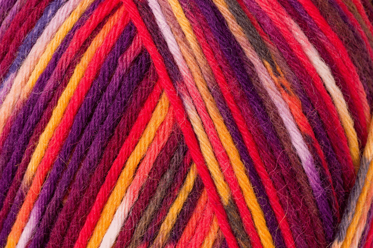 Picture of Color: Colorito: 8 Ply: 5 x 150g: Flowerfield