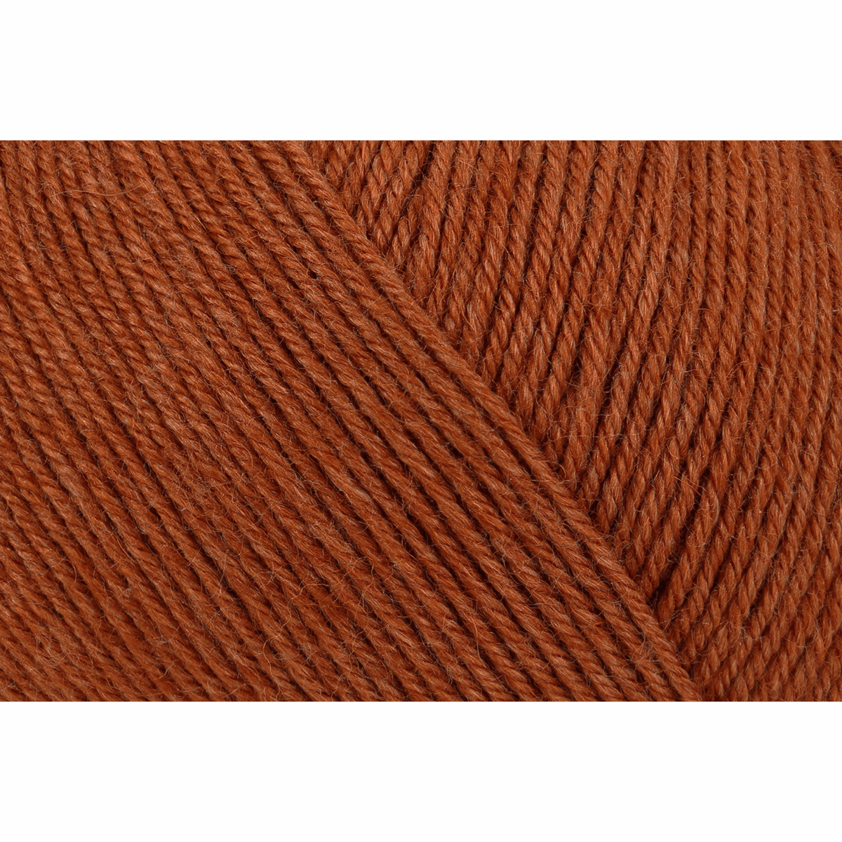 Picture of Premium Silk: 4 Ply: 5 x 100g: Rust Red
