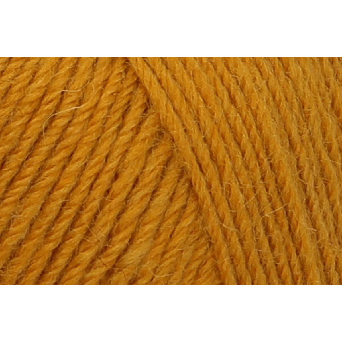 Picture of Eco Line: Uni: 4 Ply: 5 x 100g: Desert Yellow