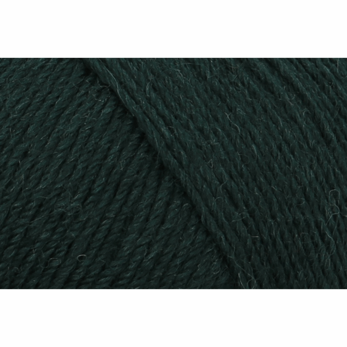Picture of Eco Line: Uni: 4 Ply: 5 x 100g: Forest Green