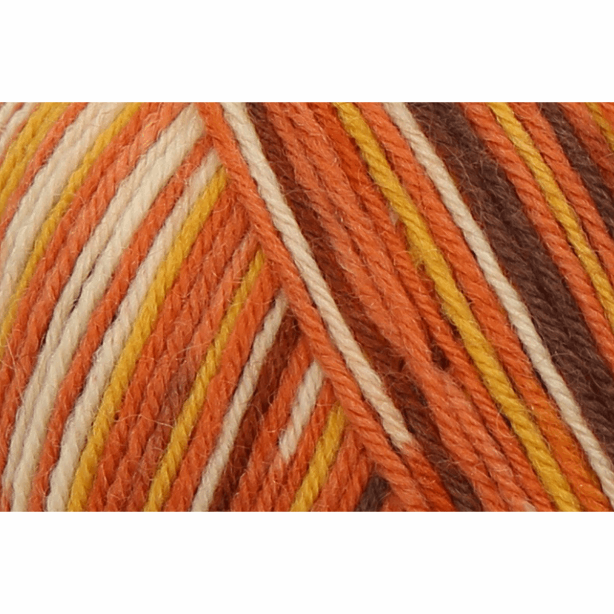 Picture of Eco Line: Colour: 4 Ply: 5 x 100g: Earth Colour