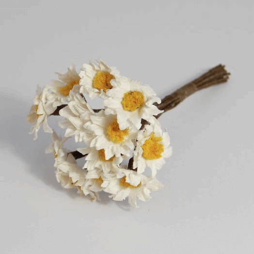 Picture of Flower: Sun Daisy: Paper: 15mm: Pack of 12: White