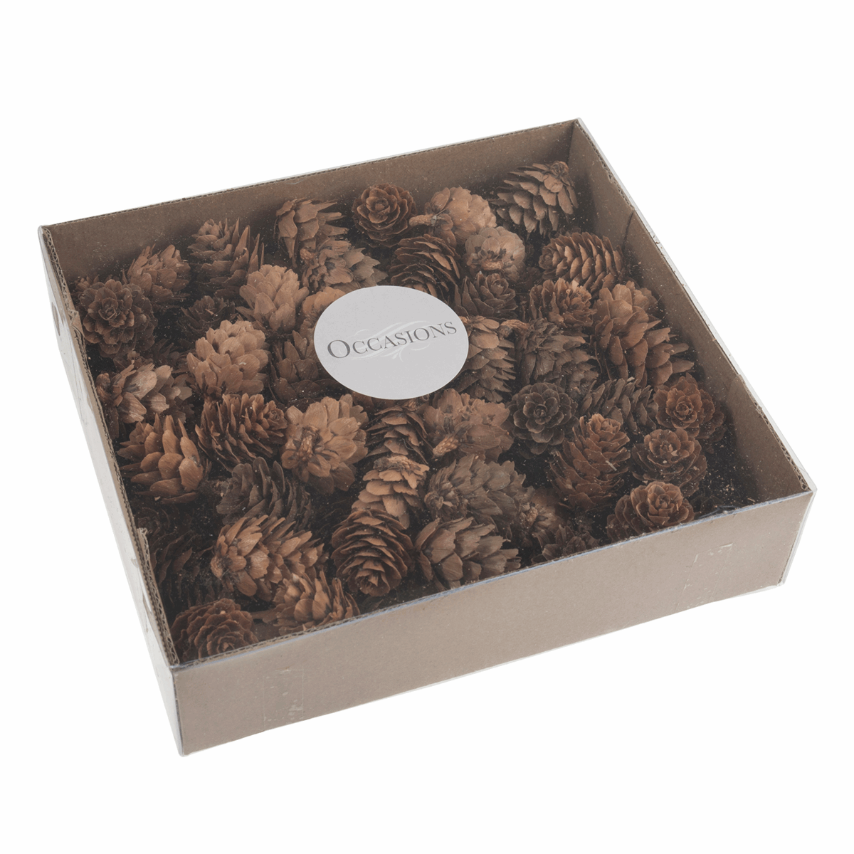 Picture of Pinecones: Box of 100 Pieces