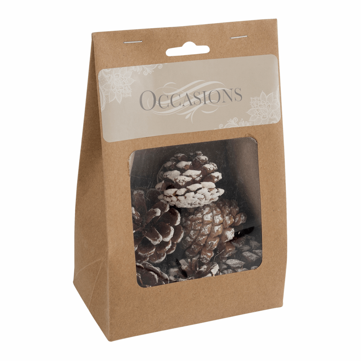 Picture of Pine Cones: White Tipped: 9 Pieces