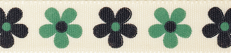 Picture of Daisy: 4m x 15mm: Green