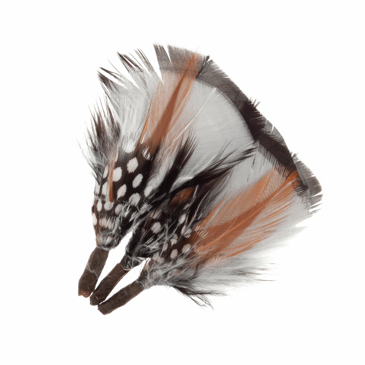 Picture of Feathers: Assorted Short Plumes: 3 per Pack