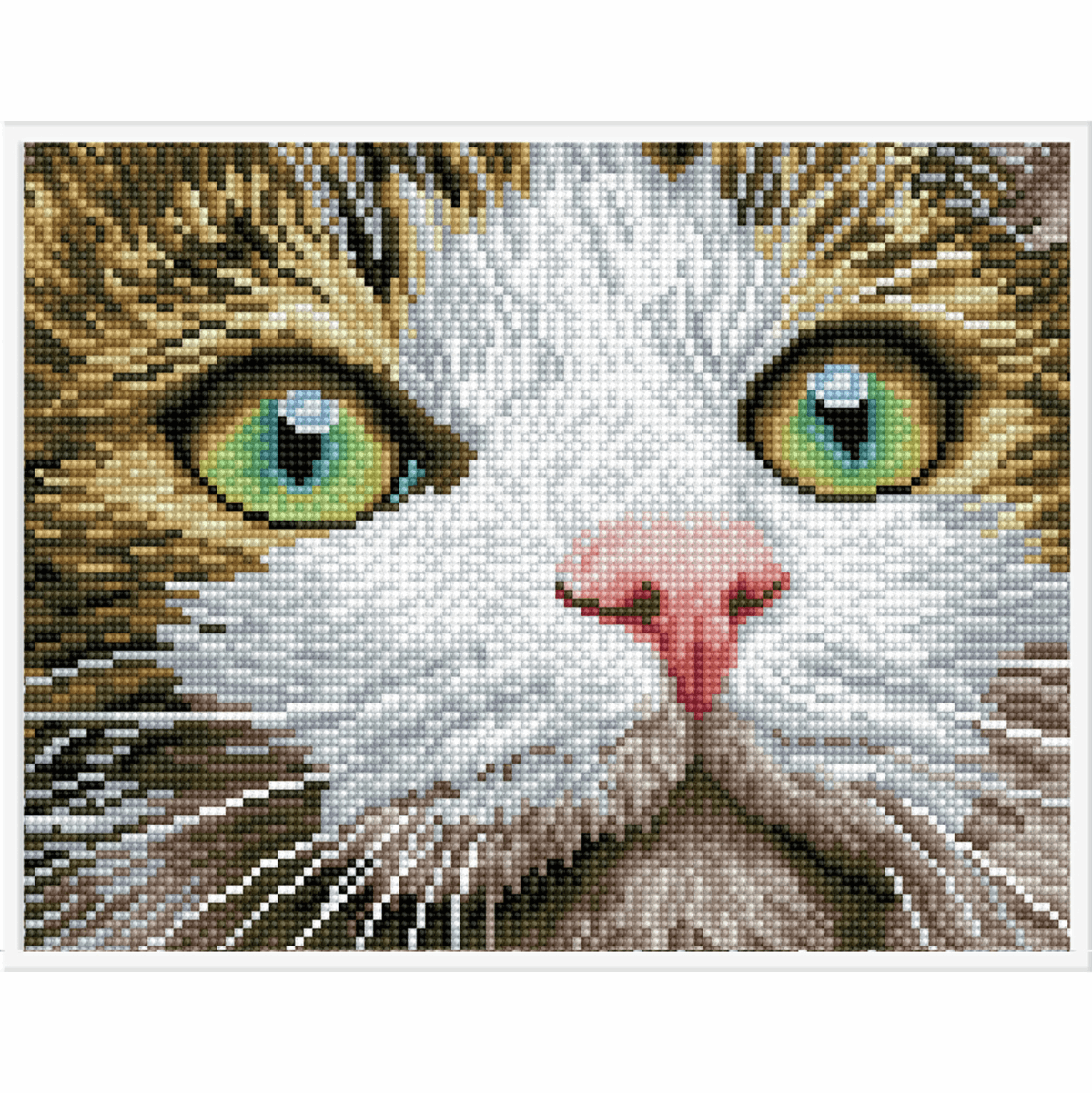 Picture of Diamond Painting: Finished Model: Green Eyed Beauty