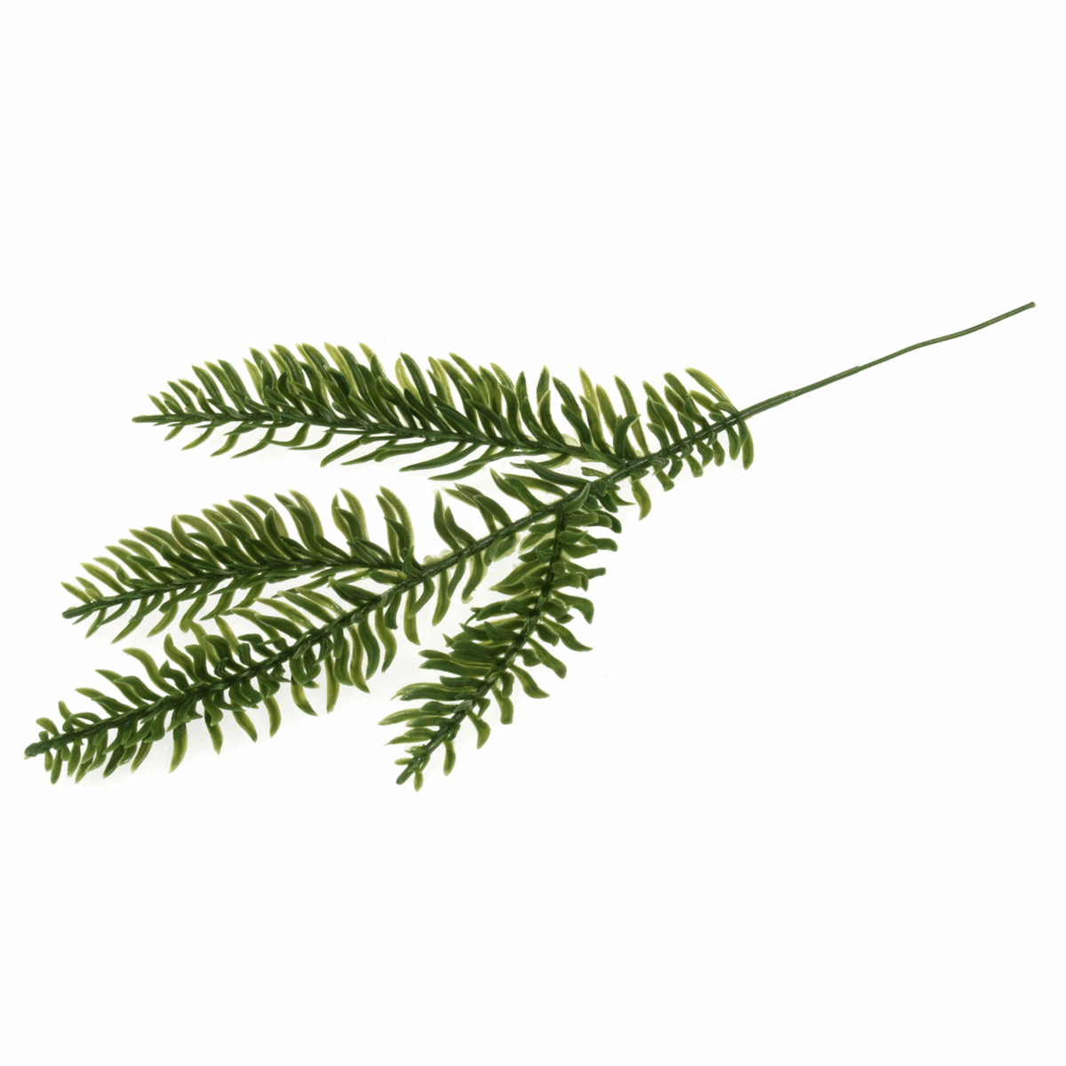 Picture of Leaves: Pine: 25cm: 12 x 1 Branch