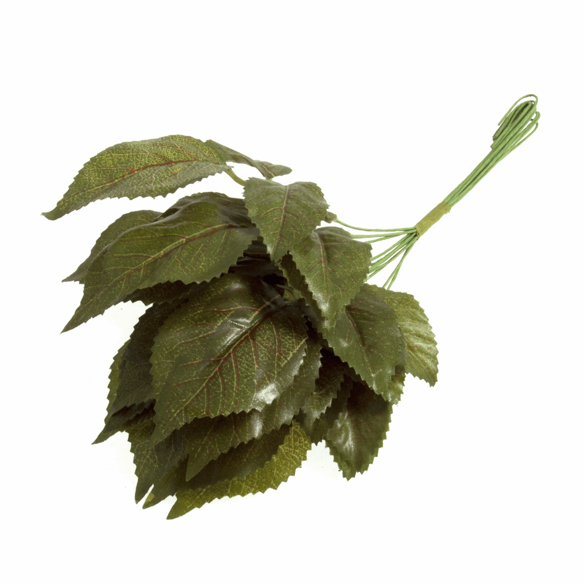 Picture of Leaves: 5 to 7cm: Pack of 12: Green