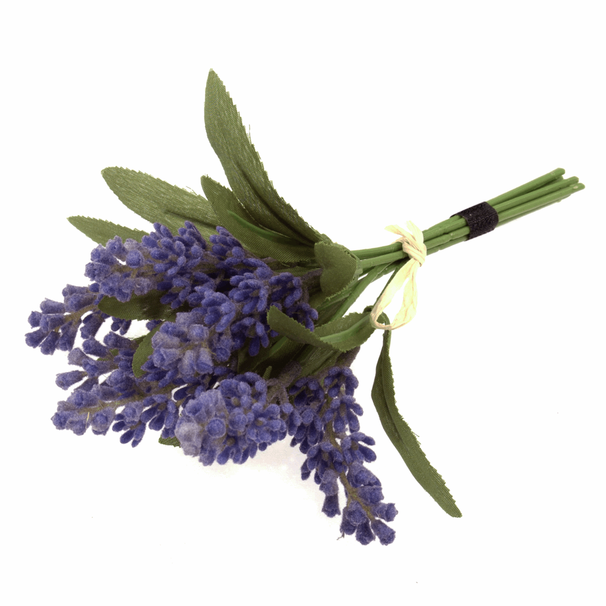 Picture of Flowers: Lavender Bunch x 7 Stems with Raffia Tie: 17cm