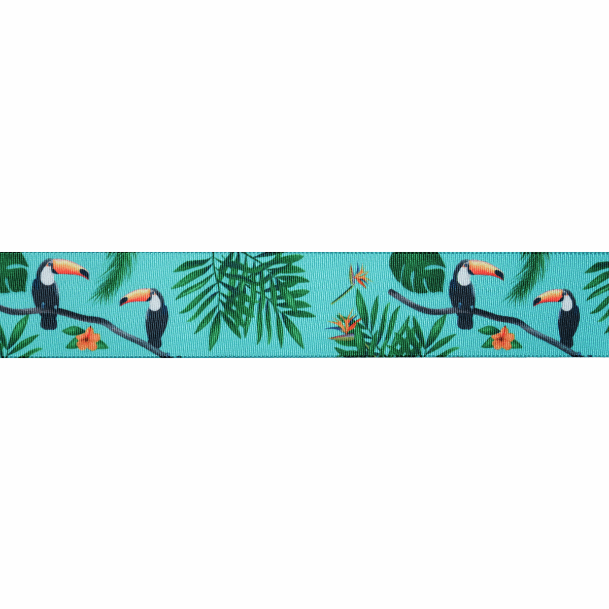 Picture of Exclusive to Groves: Toucan: 25m x 25mm