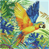 Picture of Diamond Painting Kit: Tropical Majesty